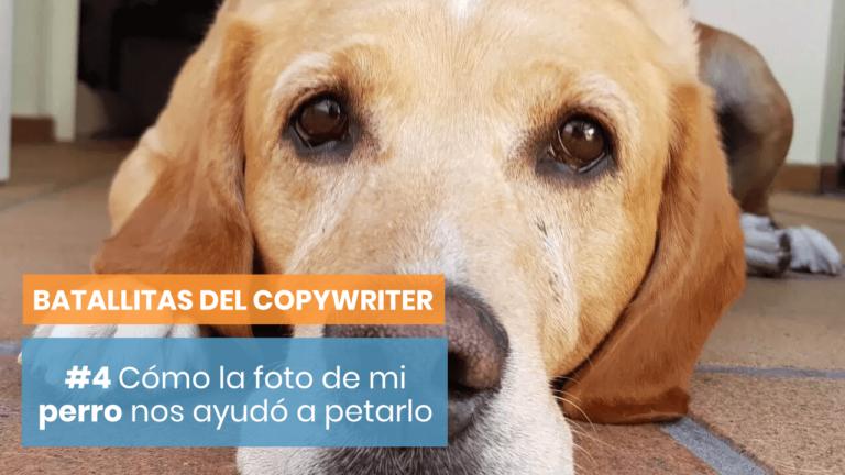 [Batallitas del Copywriter #4] La historia de la campaña con la foto de mi perro