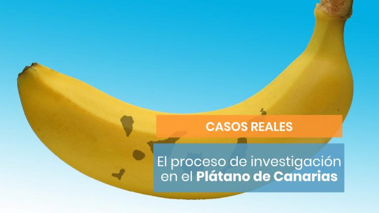 La investigación de Luis Bassat para vender el plátano de Canarias